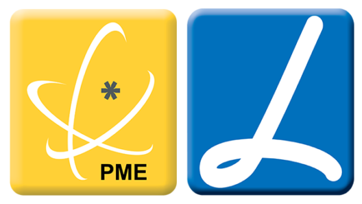PME excelência e líder